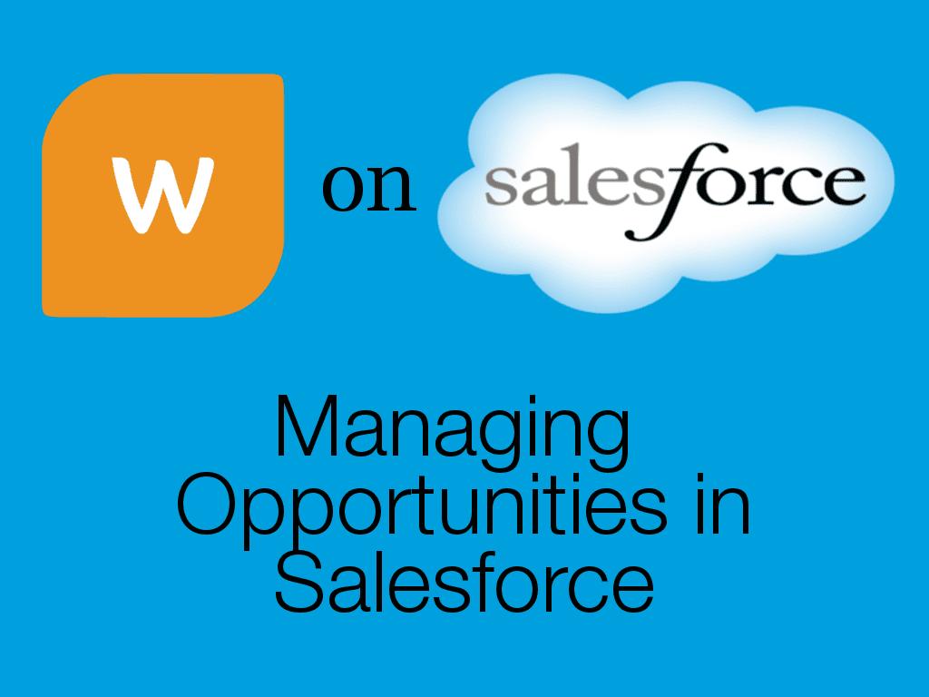 Opportunities in Salesforce