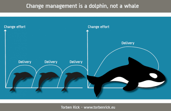 Change Management is a dolphin, not a whale