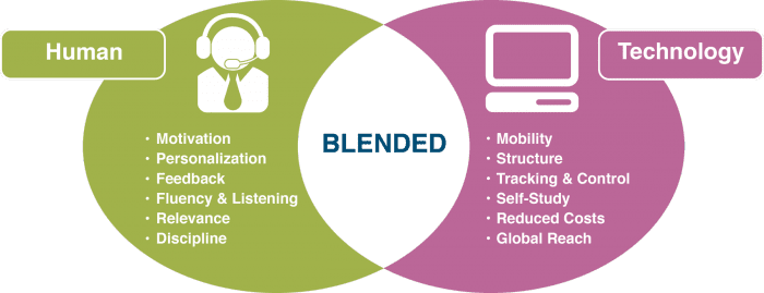 Blended learning-In-App User Assistance: What It Is And How To Nail It