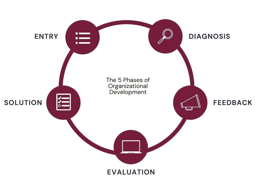 5 phases of organizational development